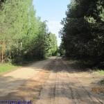 Zdjęcie nr 1 - Droga leśna odchodząca z miejscowości Góry